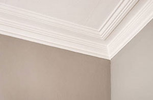 Plastering and Coving Derby